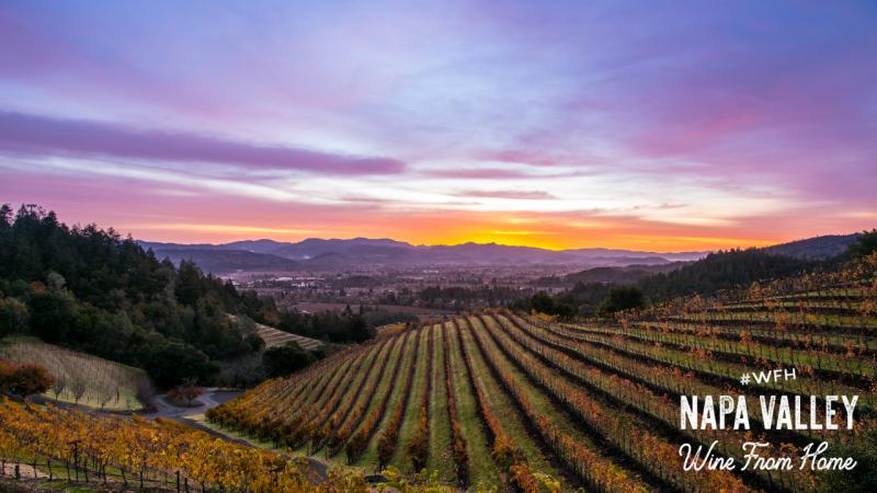 Napa Valley Zoom Background Fall Vineyard Sunset