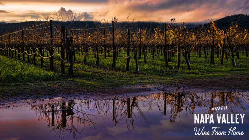 Napa Valley Zoom Background Winter Reflections