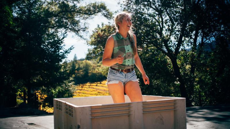 Chelsea Hoff of Fantesca Estate & Winery enjoys grape stomping after harvesting the wine grapes.