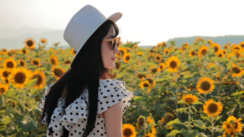 Woman admiring the sunflowers at a local farm