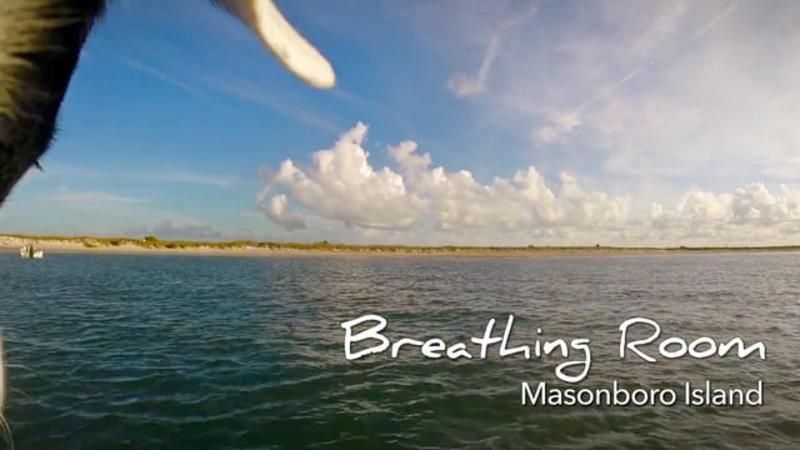 Go With the Flow........Masonboro Island