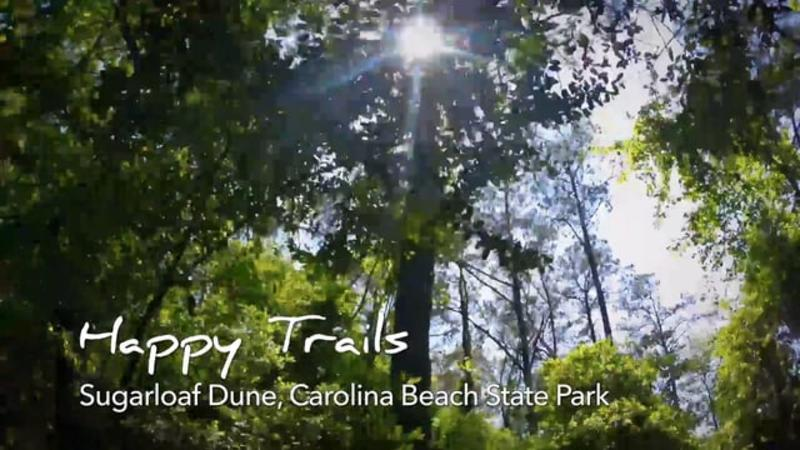 Go With the Flow....Sugarloaf Dune - Carolina Beach