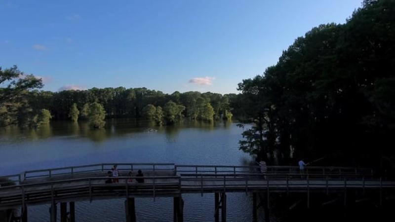 Greenfield Lake Park & Gardens, Wilmington, NC