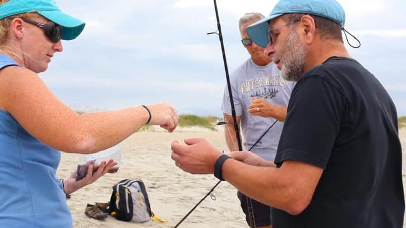 Go Local - Surf Fishing with the North Carolina Aquarium at Fort Fisher