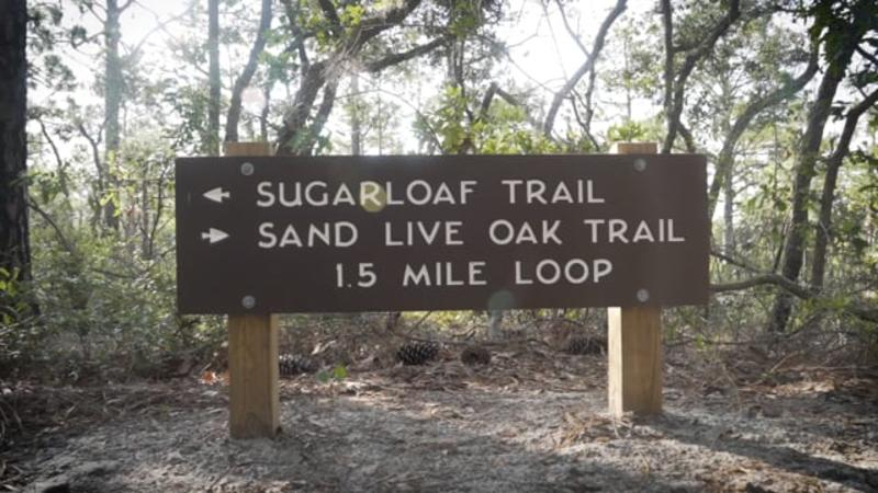 Sugarloaf Dunes