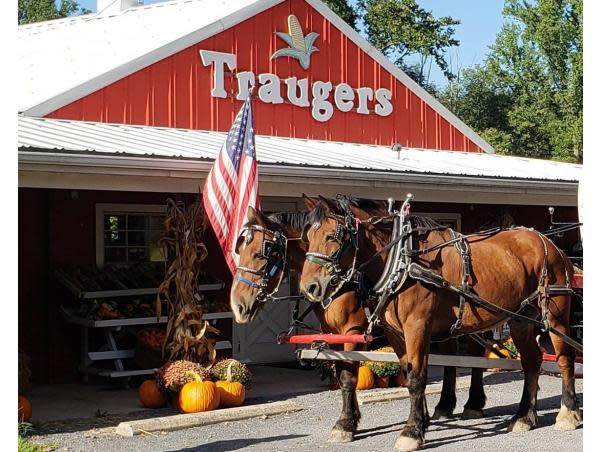 Traugers Farm Market
