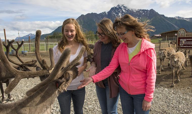 Reindeer Farm Fun