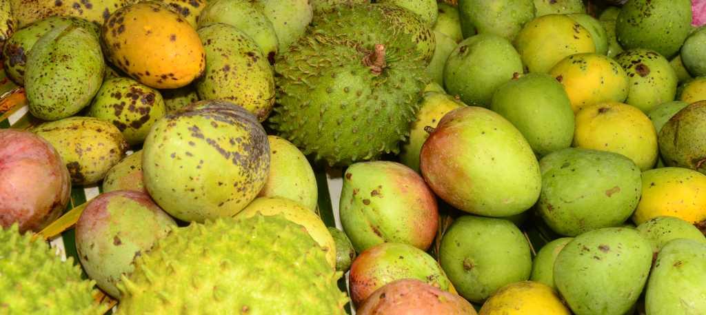 Guam's Tropical Fruits, Citrus & Other Native Fruit