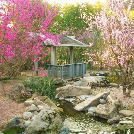 shinzen garden2