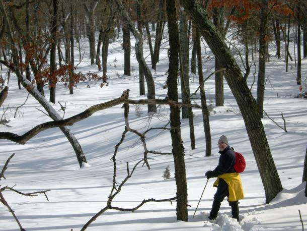 Man hiking trail