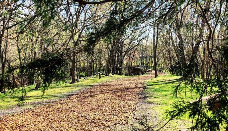 walking trail at Port Royal State Park