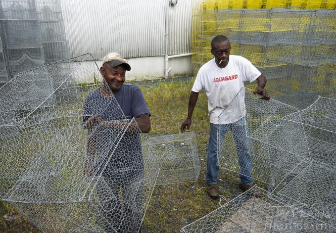 Building crab pots at Eddie heath Crab Pot Company in Crisfield, Maryland