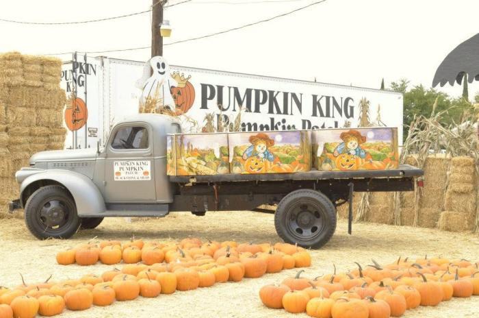 pumpkin king 1