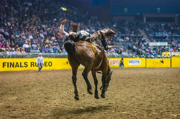 Trip Worthy Events in 2020 - CNFR