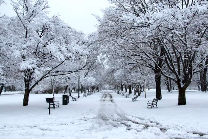 Washington Park Promenade in winter snows.