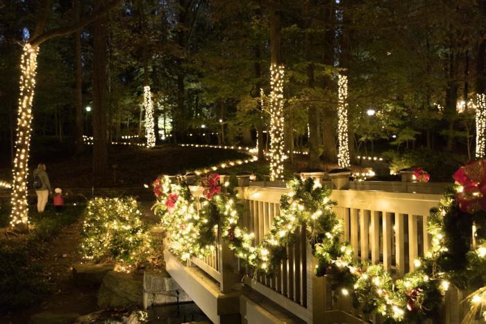 Ravinia Lights