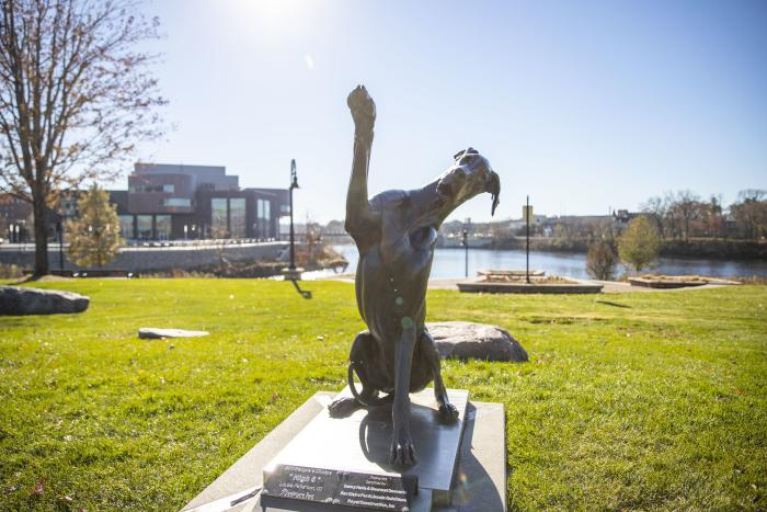 Sculpture of a big dog putting his paw up in downtown Eau Claire in Phoenix Park