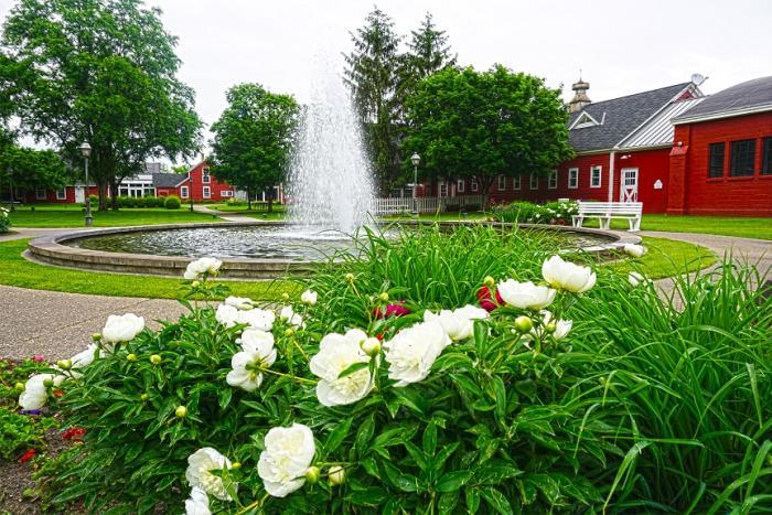 Earle Brown Heritage Center gardens