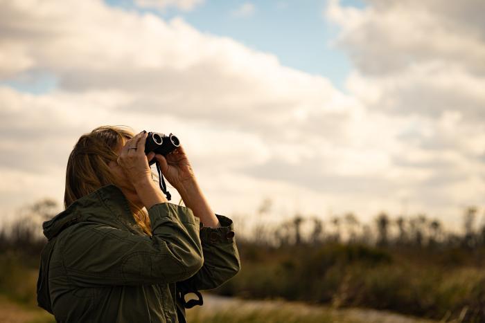 birders in mashoes alligator river wildlife refuge