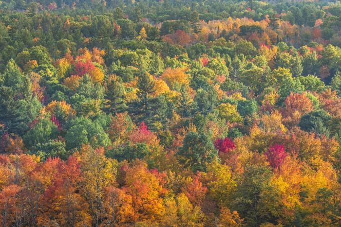 Fall scenics photos in Traverse City