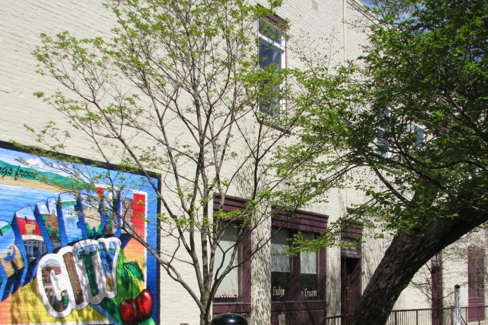 Mural in Downtown Traverse City