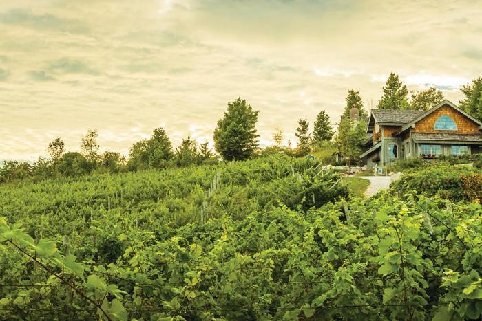 Willow Vineyards Leelanau Peninsula