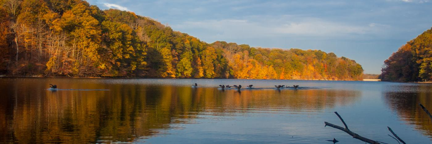 Griffy Lake 1