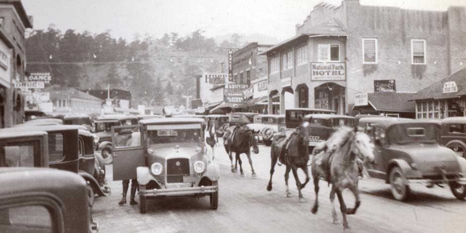 Rush Hour in Estes Park