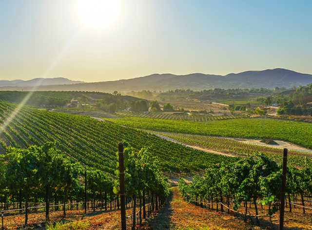 Temecula Wineries - Maps - Tastings - Events - Temecula Valley CA on