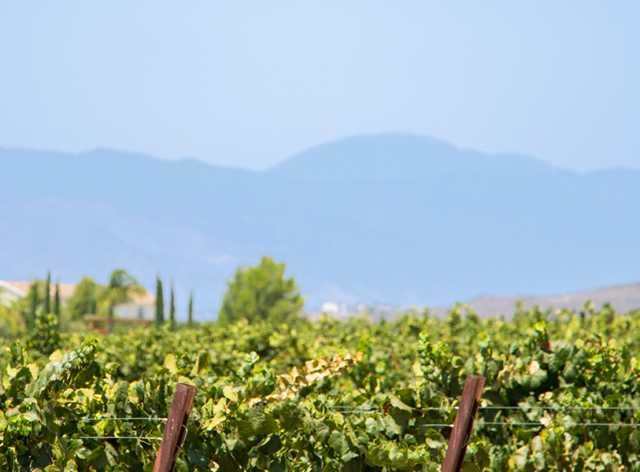 Temecula Ca Zip Code Map.Temecula Winery Map And Directions Temecula Ca