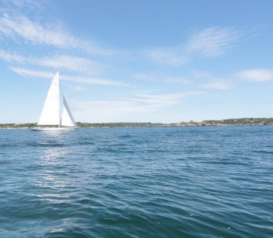 Newport Harbor Sailing
