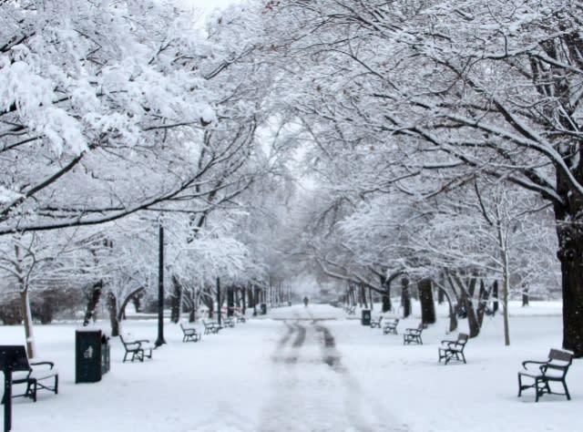 Washington Park - Photo Courtesy of Albany County Convention & Visitors Bureau