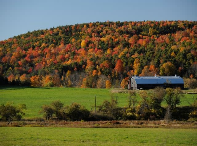 Fall Views Schoharie County along Route 30