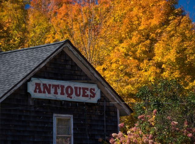 Antique Shop in Hunter