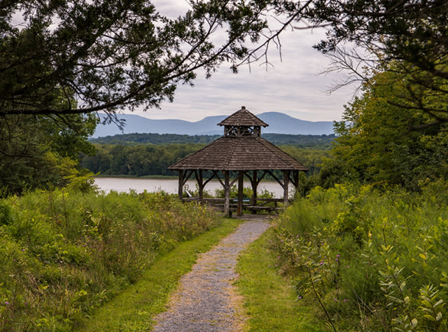A photo of a gazebo at the Green Port Conservation Area