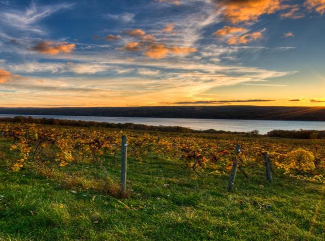 Map Of New York Wineries.New York Wineries Brotherhood Winery Seneca Lake