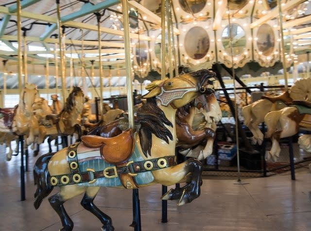 C. Fred Johnson Park Carousel