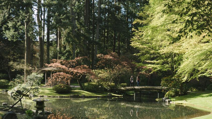 March Break Tours Available at UBC Botanical and Nitobe Memorial Gardens!