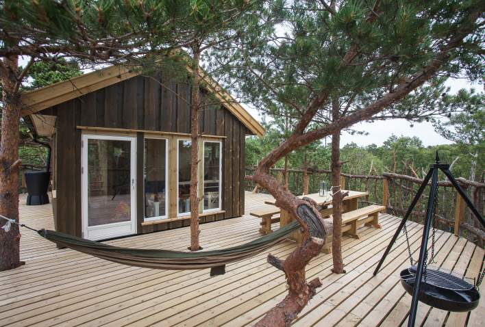 Treetop cabin in the forrest
