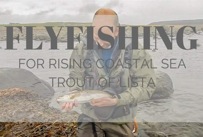 Flyfishing for rising coastal sea trout of Lista