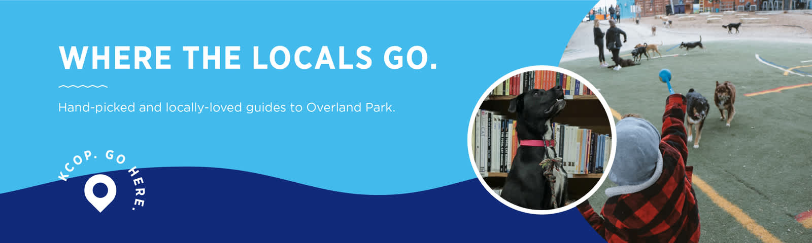 Where To Take Your Dog Overland Park