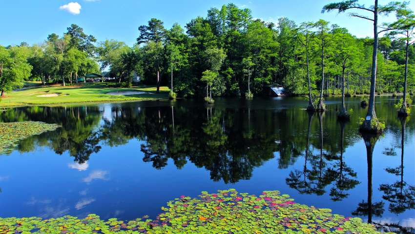 Cypress Lakes Golf Course - Lilly Pads - Pond