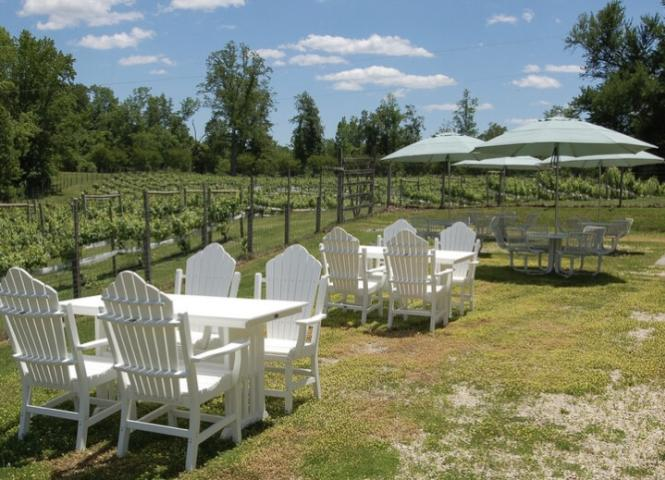 Outdoor seating for wine tasting