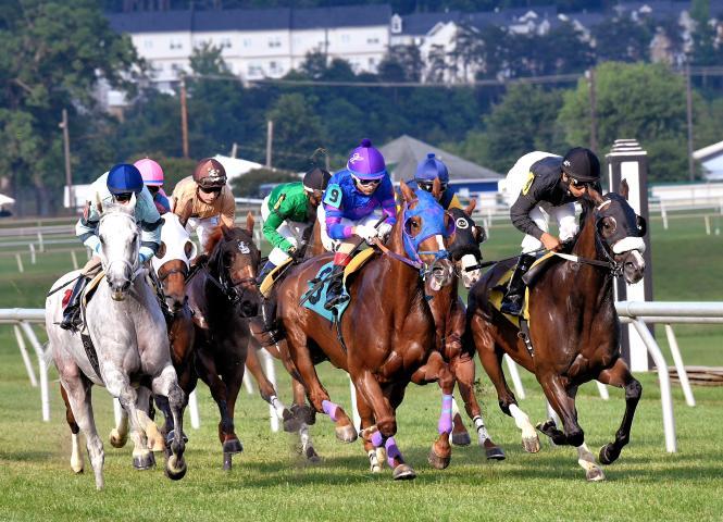 Horse running a race at Laurel Park.