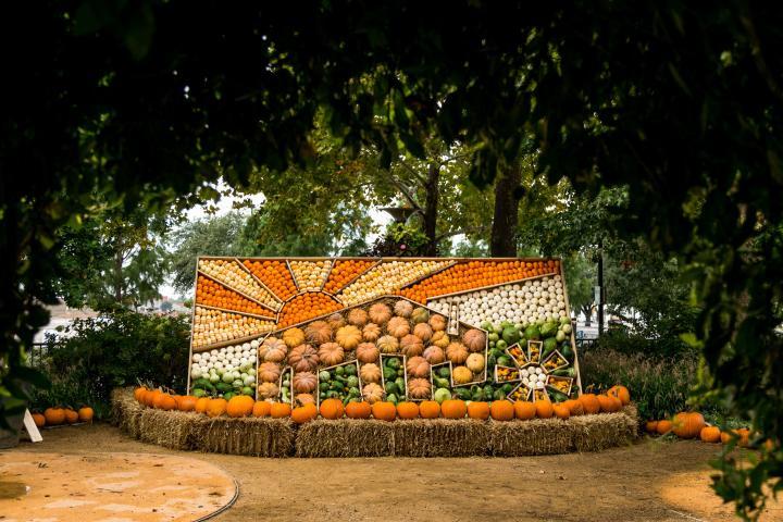 A pumpkin mosaic is on display at the Myriad Botanical Gardens in OKC.