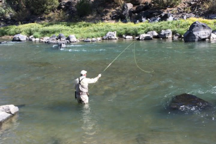 33601-Fly_Fishing-Medium