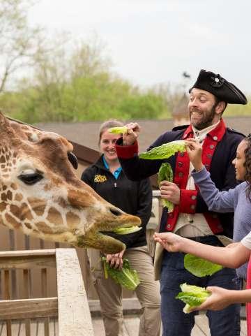 Summer 2019 Campaign Soldiers & Kids Elmwood Park Zoo Giraffe Feeding