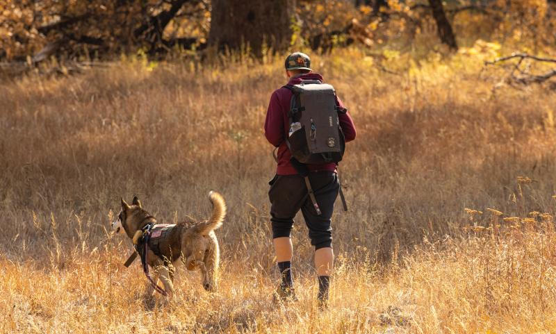 Man-hiking-along-with-his-dog