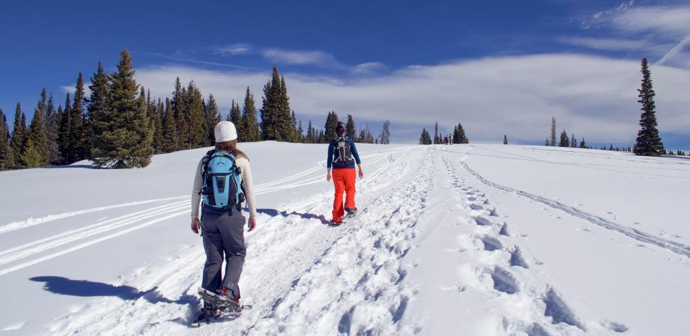 Winter Snowshoe Adventure