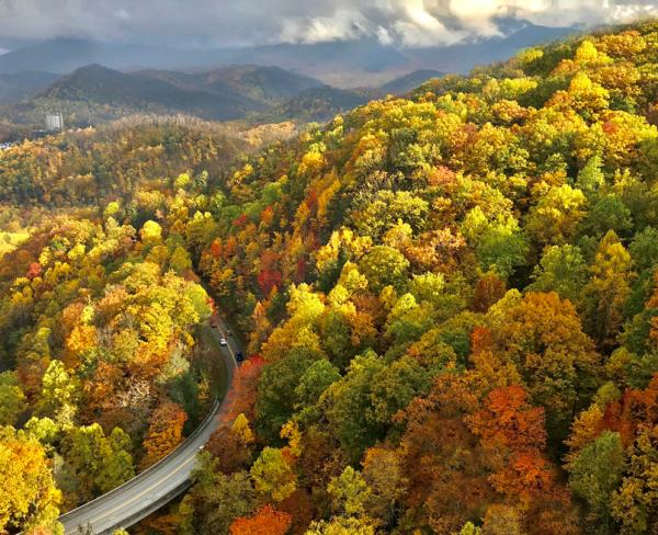 Road in Gatlinburg During the Fall